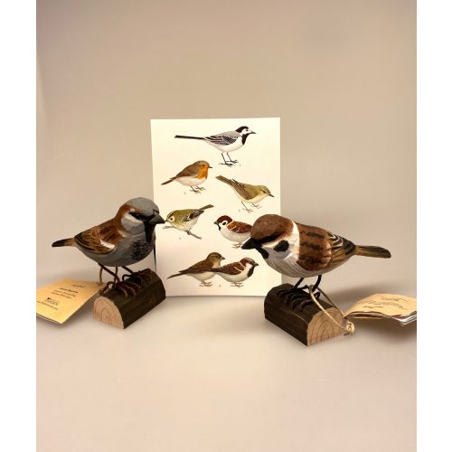 House sparrow, spurvefugl, danske fugle, fugle i farver, fuglefigur, model, træfugl, træfigur, wildlife garden, decobird, ornitolog, ornitologisk, samler, fugle, fugl, fugle entusiast, natur, den danske natur, fugleliv, gave, gaveide, jeg kigger på fugle, realistisk, naturlig, naturelsker, Biti, Ribe,Naturens fugle af træ - Gråspurv
